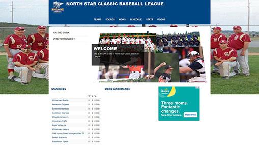 website example 3